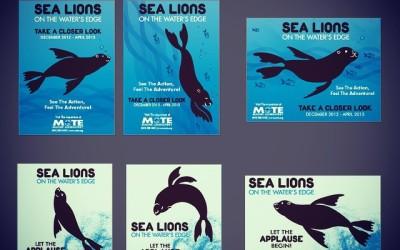 """Campaign & Poster design for Mote Marine """"Sealion Exhibit"""""""